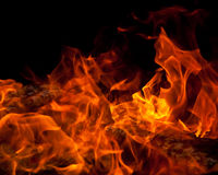 Orange Fire. Orange flames in a campfire Royalty Free Stock Images