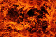 Orange fire background. Big fire background in the dark night Royalty Free Stock Photo