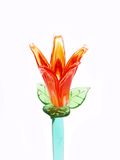 Orange Fire Crystal Flower Royalty Free Stock Image