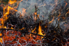 Orange fire flames, ashes and smoke Stock Images
