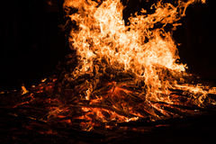 Orange fire flames Royalty Free Stock Images