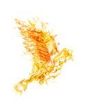 Orange fire flying dove on white Stock Image