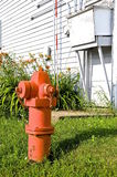 Orange fire hydrant. A combination of an orange fire hydrant and orange tiger lilies with a backdrop of an white siding on an old building royalty free stock images