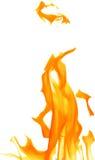 Orange fire on white background illustration. Illustration with bright flame on white background Stock Image