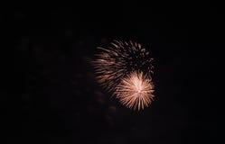 Orange firework in the dark sky Stock Photo
