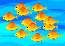 Orange fish Stock Photography