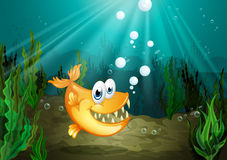 An orange fish with big fangs. Illustration of an orange fish with big fangs Royalty Free Stock Photography