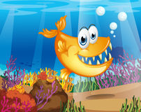 An orange fish near the coral reefs Stock Photo