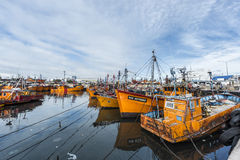Orange fishing boats in Mar del Plata, Argentina Royalty Free Stock Image