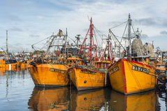 Orange fishing boats in Mar del Plata, Argentina. MAR DEL PLATA, ARGENTINA - APR 04: Typical orange fishing boats on the port of the coastal city on Apr 04, 2013 Stock Photo