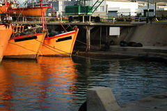 Orange fishing boats and sea lions. Typical orange fishing boats on the port of the coastal city of  Mar del Plata, Argentina Royalty Free Stock Image