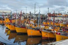Orange fiskebåtar i Mar del Plata, Argentina Arkivbild
