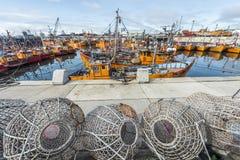 Orange fiskebåtar i Mar del Plata, Argentina Royaltyfri Bild
