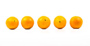 Orange. Five oranges in a series of consecutive Royalty Free Stock Photography