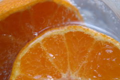 Orange Fiz Stock Photography