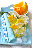 Orange fizz. Stock Images