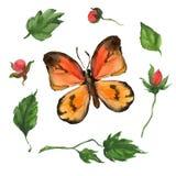 Orange fjäril och blommor Royaltyfri Bild