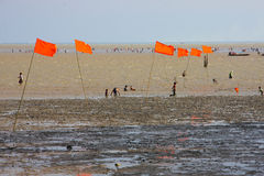 Orange flag on esturey Stock Photo