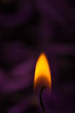 Orange flame with soothing purple background Stock Images