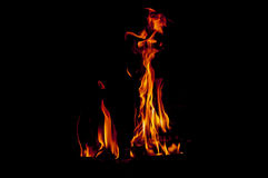 Orange flames. Flames in black background, fireplace Stock Photos