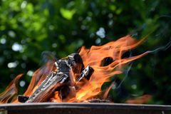 Orange flames, burning wood, outdoor campgrill. Burning wood with orange flames on grill, summer outdoor program royalty free stock photo