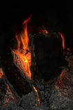 Campfire flames and embers 5 Stock Image