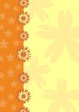 Orange  floral background Royalty Free Stock Photos