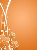 Orange  floral background. Illustration of orange  floral background Royalty Free Stock Images