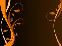 Orange Floral Background Stock Photos