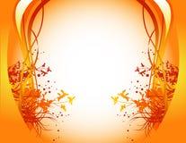 Orange floral background Stock Photo