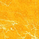 Orange floral background Royalty Free Stock Images