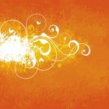 Orange Floral Background Stock Images