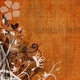 Orange floral grunge Stock Images