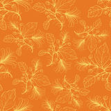 Orange floral pattern.Vector illustration. Royalty Free Stock Image