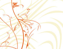 Orange floral with white backg. Orange floral with light abstract on a white background Vector Illustration
