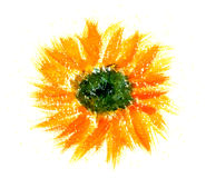 Orange Flower. A painting of an orange flower from above Royalty Free Stock Photos