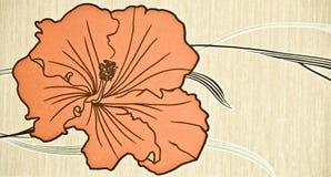 Orange flower Stock Images