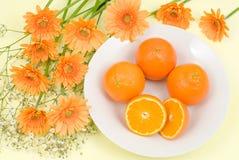 Orange and flower Stock Photos