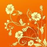 Orange flower. Yellow flowers on orange back Stock Photography