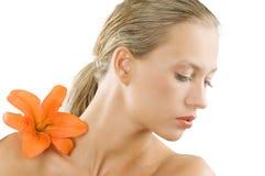 The orange flower Royalty Free Stock Photos