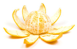 Orange - flower. Orange with peel in view flower, on white stock photography