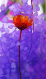 Orange Flower. An artificial orange flower floating in liquid wax against a purple background Royalty Free Stock Photo
