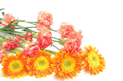 Orange flower bouquet Stock Photography