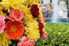 Orange flower in a bouquet. Beautiful orange flower in a bouquet, Naturally beautiful flowers in the garden Royalty Free Stock Photo