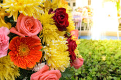 Orange flower in a bouquet. Beautiful orange flower in a bouquet, Naturally beautiful flowers in the garden , process in soft orange sun light style Stock Photo