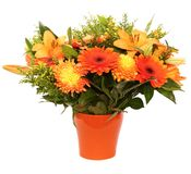Orange flower bouquet. (with mums, goldenrod) in a orange ceramic flowerpot isolated on white background Stock Photo