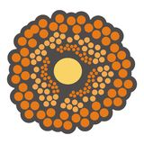Orange flower or cells Stock Image