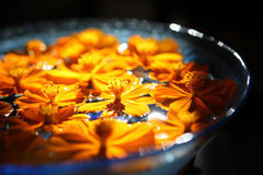 Orange flower float on water in glass bowl. Stock Images