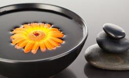 Orange flower floating on a black bowl Stock Images