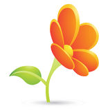 Orange Flower Icon Stock Photos